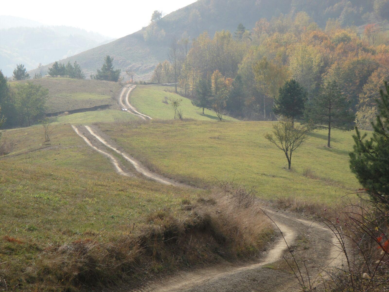 meditatie-dumbrava-pathway