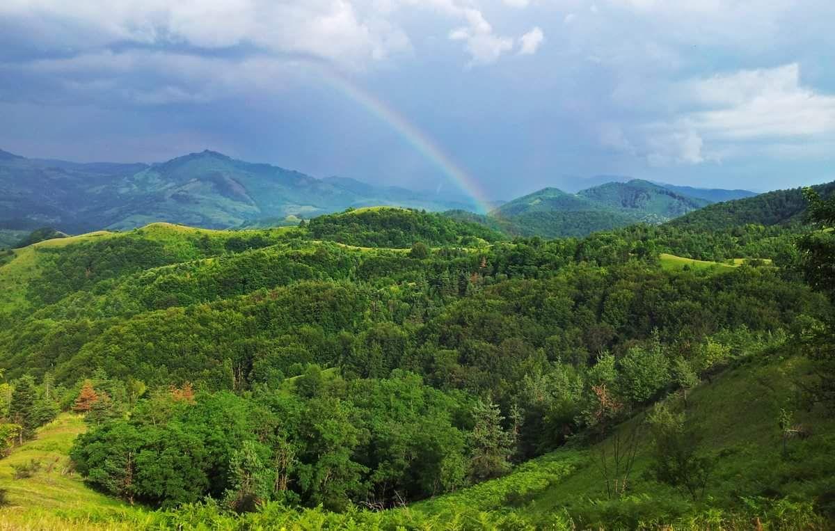 meditatie-dumbrava-rainbow