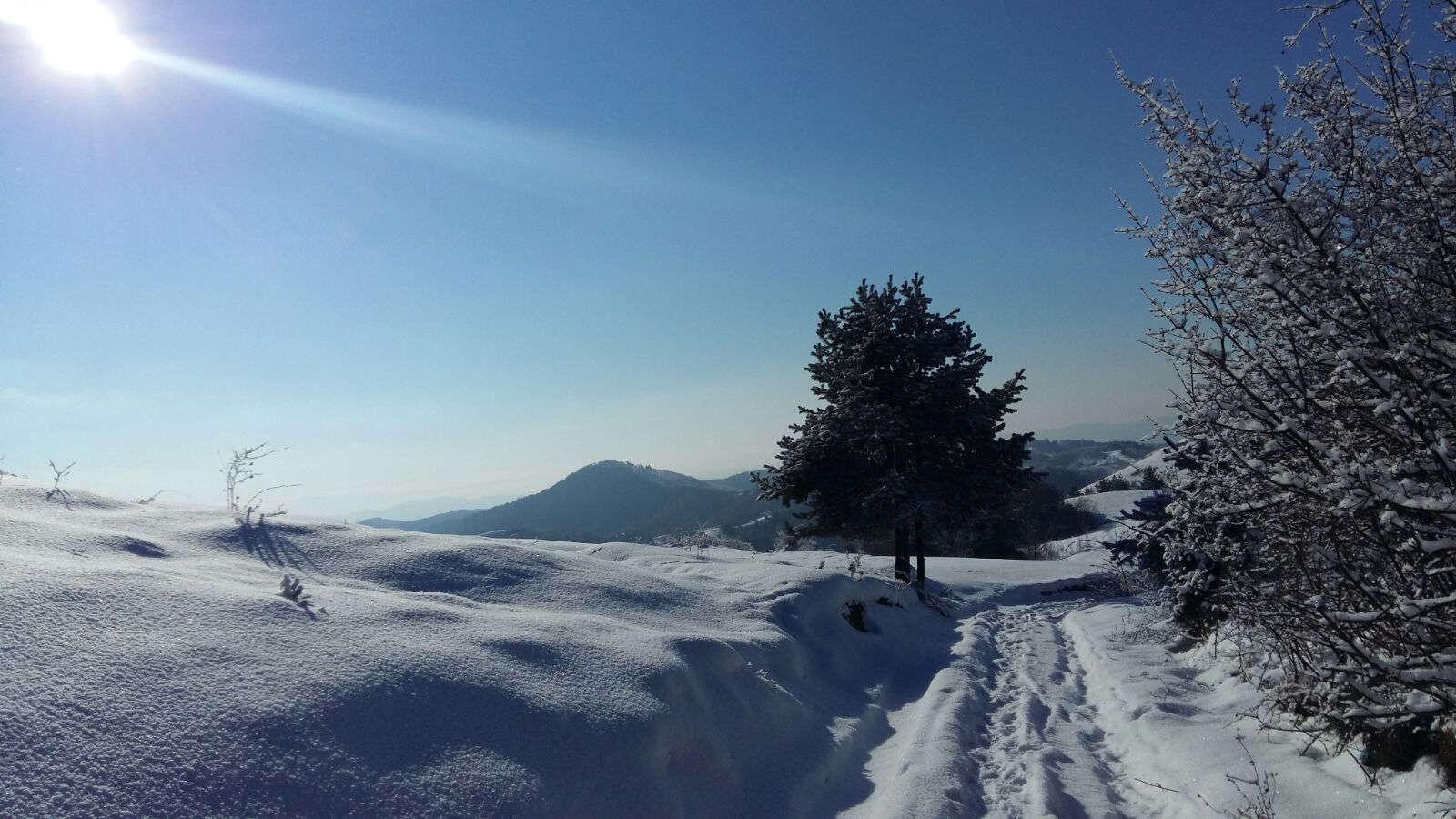 meditatie-dumbrava-winter-pathway